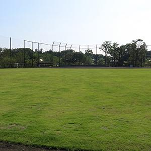 井の頭公園 草野球グラウンド 外野から